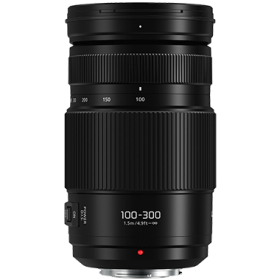 Panasonic Lumix G Vario 100-300mm F4-5.6 II Power OIS