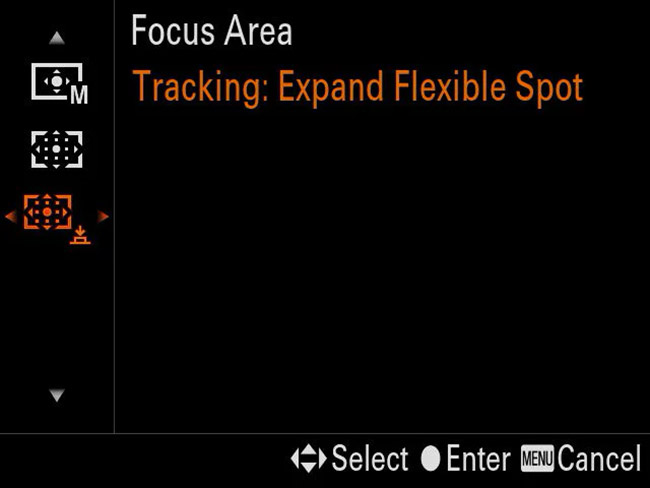 sony a9 expand flexible spot