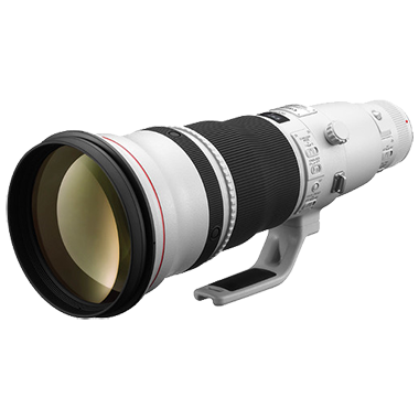 Canon EF 600mm F4L IS II USM
