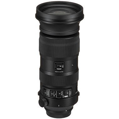 Sigma 60-600mm F4.5-6.3 DG OS HSM Sports